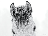 Snow Daze II Crop Lámina fotográfica prémium por Lisa Cueman