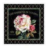 Garden View VII Posters af Lisa Audit