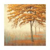 Arbres d'automne I Affiches par James Wiens