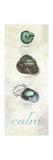 Touch of Blue Shells II Giclée-Premiumdruck von Katie Pertiet