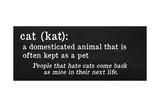 Cat Definition Kunst av Anna Quach
