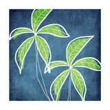 Palmiers Affiches par Linda Woods