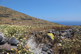 Grassland on Santorini Island Photographic Print by  sophysweden