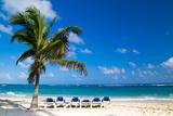 Beach Chairs under a Palm Tree Fotografisk trykk av Vitaliy Pakhnyushchyy