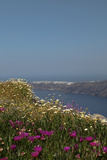 Oceanfront on Santorini Island Photographic Print by  sophysweden
