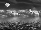 Moonlit Beauty Valokuvavedos tekijänä  marilyna