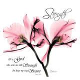 Orchid Strength Prints by Albert Koetsier