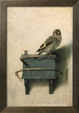 The Goldfinch, 1654 Art by Carel Fabritius