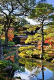 Ginkaku-Ji Temple in Kyoto, Japan during the Fall Season. Nov 19 Photographic Print by  SeanPavonePhoto