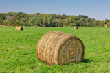 Prominent Single Haystack Reproduction photographique par  Wolterk