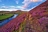 Beautiful Landscape of Scottish Nature Valokuvavedos tekijänä  -Markus-