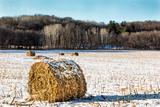 Haystacks on the Frozen Field Reproduction photographique par  Wolterk