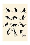 Cat Versus Frog Print by Théophile Alexandre Steinlen