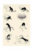 Cat Versus Goldfish Lámina por Théophile Alexandre Steinlen