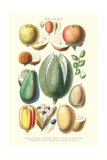 Fruits and Nuts Prints by William Rhind