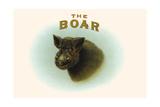 Boar Kunstdrucke