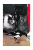 Beobachtung von Vögeln Kunstdrucke von Suzanne Valadon