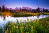 Teton Sunrise Fotografisk tryk af Steve Burns
