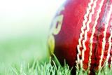 Close-Up of a Cricket Ball Fotografisk trykk av  Visage