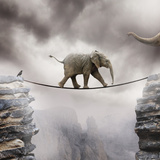 Babyolifant Kunst op gespannen canvas van by Sigi Kolbe