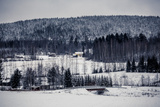 Wooden Cottage in Winter Forest, Central Finland Photographic Print by Andrew Bayda