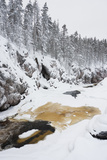River Flowing in Snowy Winter Forest Fotografisk trykk av  Risto0