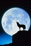 WOLF & MOON Lámina fotográfica por Francesco Reginato