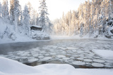Hut near Pond in Winter Forest Fotografisk trykk av  Risto0