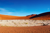 Namib Desert Fotografisk trykk av  DmitryP