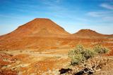 Kalahari Desert Landscape Fotografisk trykk av  DmitryP