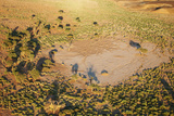 Kalahari Desert Fotografisk trykk av  DmitryP