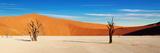 Namib Desert, Sossusvlei, Namibia Lámina fotográfica por  DmitryP