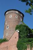 Wawel Hill and the Royal Castle in Krakow Reproduction photographique par  wjarek