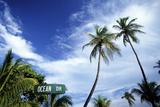 Ocean Drive, South Beach, Miami, Florida, USA Fotografisk tryk af Hisham Ibrahim