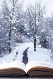 Open Book with Winter Woodland Background and falling Snow Lámina fotográfica por  Chris_Elwell