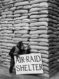 Air Raid Chimp Stampa fotografica di  Keystone
