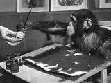 Artistic Primate Stampa fotografica di John Pratt