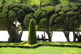 Parterre Gardens in Parque Del Buen Retiro. Photographic Print by Krzysztof Dydynski