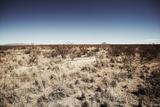 West Texas Landscape Reproduction photographique par Cameron Davidson