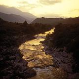Prac Naturel Regional Du Corse, Corse, France Impressão fotográfica por Hans Peter Merten