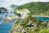 Rugged Coastline Covered by Lush Vegetation Photographic Print by Ippei Naoi