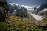 Glacier Du Tacul Photographic Print by  BenC
