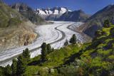 Aletsch Glaciers in Swiss Alps Photographic Print by Cornelia Doerr