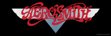 Aerosmith - Dream On Banner 1973 Poster by  Epic Rights