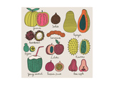 Bright Tropical Fruit Set in Vector. Guava, Salak, Papaya, Rambutan, Tamarind, Feijoa, Litchi, Kiwa Print by  smilewithjul