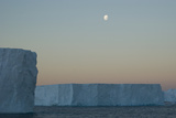 Moon Seeting over Massive Tabular Icebergs, South Georgia, South Atlantic Photographic Print by Paul Kay