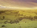 Rural Landscape Reproduction photographique par Images Etc Ltd