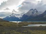 Guanaco Patagonia Fotografie-Druck von Cesar Gonzalez Palomo
