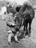 Feeding the Pony Fotografisk tryk af Fox Photos