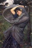 Boreas Pósters por John William Waterhouse